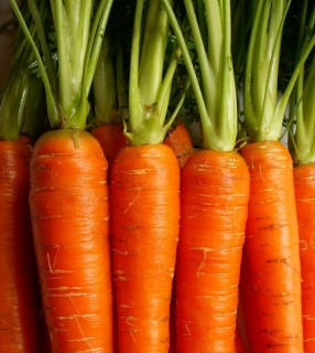 Healthy-Foods-Carrots--e1320877152372-286x320